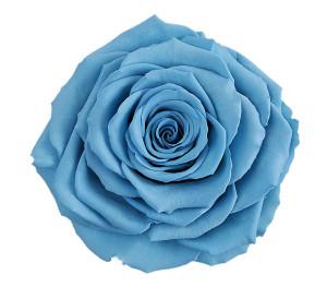 RR-BABY-BLUE