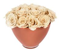 Champgne In Orange Vase