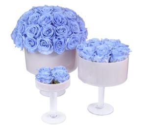 Cool Lavender Set