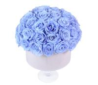 Cool Lavender