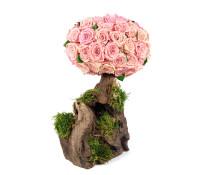 Royal Rose Tree